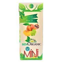 BenOrganic Organic Fruit Juice With Peach 200ml (With Colorig Card & Paint)