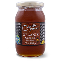 Cityfarm Organic Pine Honey 480g