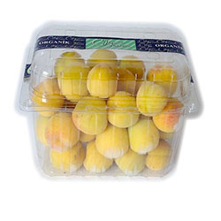 Cityfarm Organic Apricot (KG)