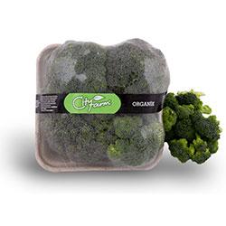 Cityfarm Organic Broccoli (KG)
