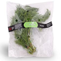 Cityfarm Organic Dill (Pcs)