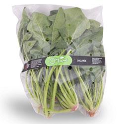 Cityfarm Organic Spinach (KG)