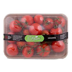 Cityfarm Organic Tomato Kokteyl (KG)