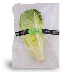 Cityfarm Organic Romaine Lettuce (Pcs)