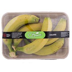 Cityfarm Organic Banana (KG)