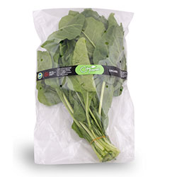 Cityfarm Organic Silverbeet (Pcs)