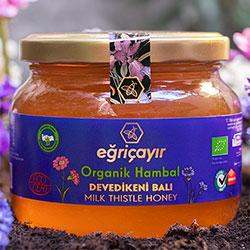 Eğriçayır Organic Milk Thistle Honey 450g