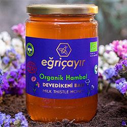 Eğriçayır Organic Milk Thistle Honey 850g
