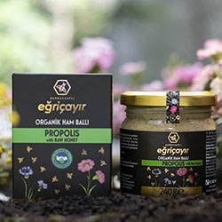 Eğriçayır Organic Propolis with Raw Honey 240g