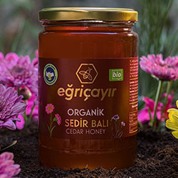 Eğriçayır Organic Cedar Honey 850g