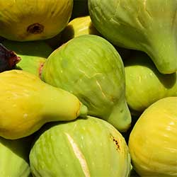DEĞİRMEN ÇİFTLİĞİ Organic Fig (White) (KG)