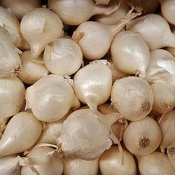 Kale Organic Onion (White) (KG)