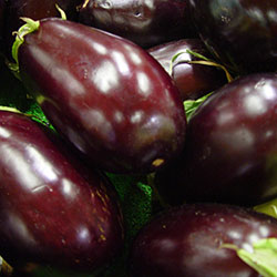 Cityfarm Organic Bell Eggplant (KG)