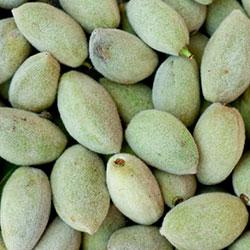 DEĞİRMEN ÇİFTLİK Organic Green Almond (KG)