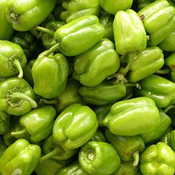 KALE Organic Sweet Bell Pepper (KG)