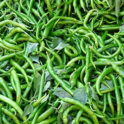 DEĞİRMEN ÇİFTLİĞİ Organic Green Pepper (KG)