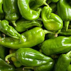 DEĞİRMEN ÇİFTLİĞİ Organic Peeper (KG)