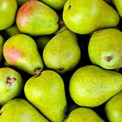 YERLİM Organic Pear (KG)