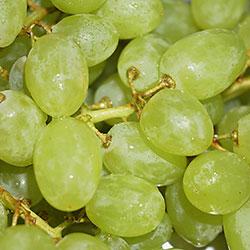 Yerlim Organic Grape (KG)