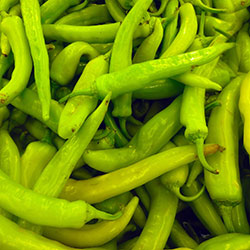 DEĞİRMEN ÇİFTLİĞİ Organic Banana Pepper (KG)
