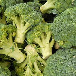 DEĞİRMEN ÇİFTLİĞİ Organic Broccoli (KG)