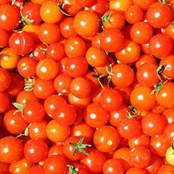 DEĞİRMEN ÇİFTLİĞİ Organic Cherry Tomato (KG)