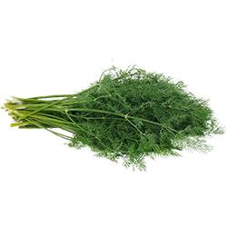 Kale Organic Dill (Pcs)