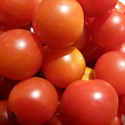 Yerlim Organic Truss Tomatoes (KG)