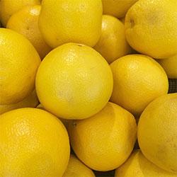 DEĞİRMEN ÇİFTLİĞİ Organic Grapefruit (KG)