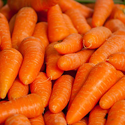 MNV Organic Carrot (KG)