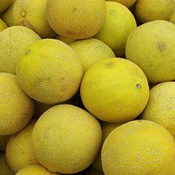 DEĞİRMEN ÇİFTLİĞİ Organic Melon (KG)