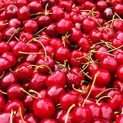 Cityfarm Organic Cherry (KG)