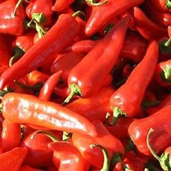 DEĞİRMEN ÇİFTLİĞİ Organic Red Capia Pepper (KG)