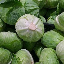 Kale Organic White Cabbage (KG)