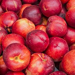 Yerlim Organic Nectarine (KG)