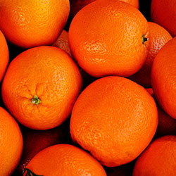 YERLİM Organic Orange (Valencia) (KG)