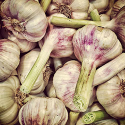 Ersöz Organic Green Garlic (Pcs)