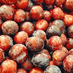 YERLİM Organic Red Plum (KG)
