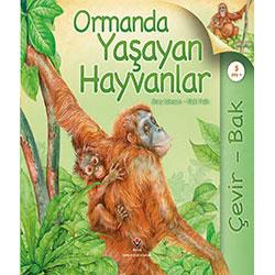 Çevir - Bak: Ormanda Yaşayan Hayvanlar (Yaş 5+) (Tübitak, Hannah Wilson, Simon Mendez)
