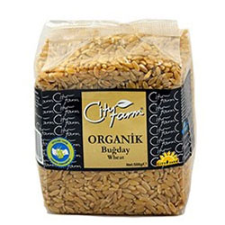 City Farm Organik Buğday 500gr
