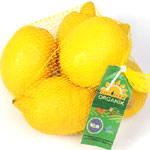 City Farm Organik Limon (KG)