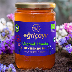 Eğriçayır Organic Milk Thistle Honey 850g