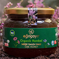 Eğriçayır Organic Oak Honey 450g