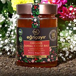 Eğriçayır Organik Sandal Çiçeği Balı  Ham Bal  450g