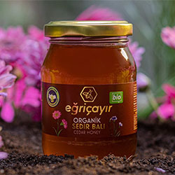 Eğriçayur Organic Cedar Honey 225g