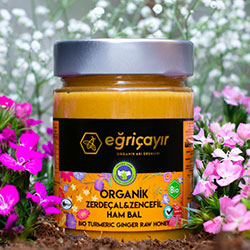 Eğriçayır Organic Raw Honey with Turmeric & Ginger 415g
