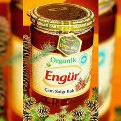 Engür Organik Çam Salgı Balı 470gr