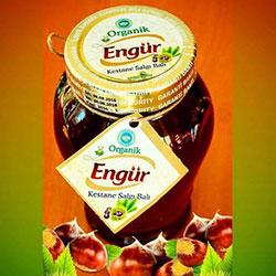 Engür Organik Kestane Salgı Balı 250gr