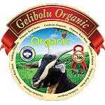 Organik Ke&#231i Peyniri