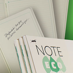 NOTE ECO Ecological Block Note  Ruled  10 3x14 7  Blue Cover  50 Sheets